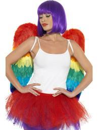 Vleugels regenboog (60cm x 60cm)