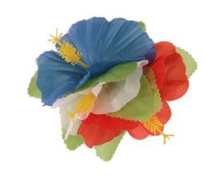 haarbloem hawai