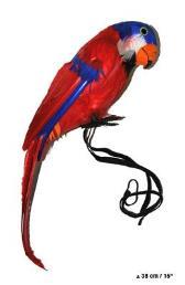 Papegaai 35cm
