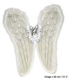 Vleugels wit groot