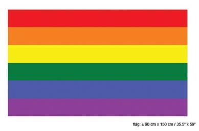 Regenboog vlag (90x150cm)