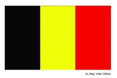 XL vlag 436x350cm