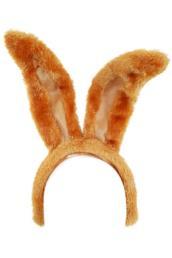 Diadeem bruin konijn