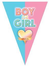 Vlaggenlijn Gender reveal