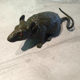 Rat 20 cm