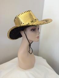 Cowboyhoed goud