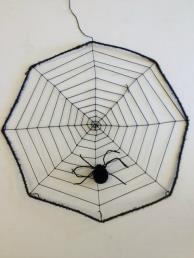 Spinnenweb met spin